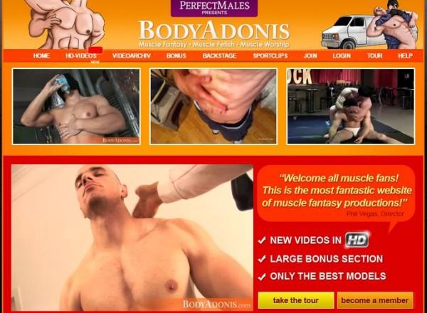 bodyAdonis