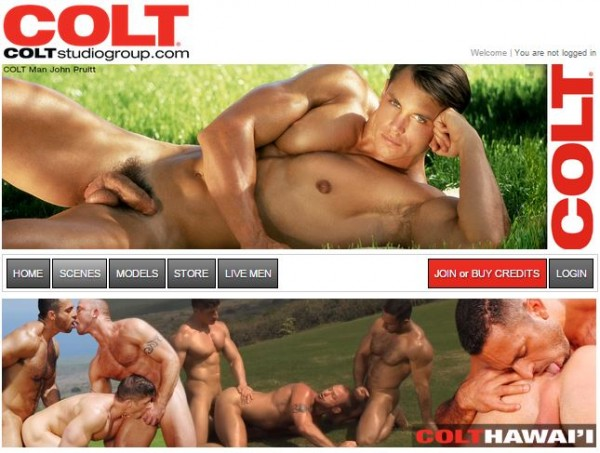 coltStudioGroup